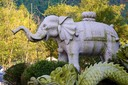Temple elephant outside